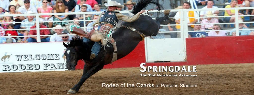 Rodeo of the Ozarks Banner 3